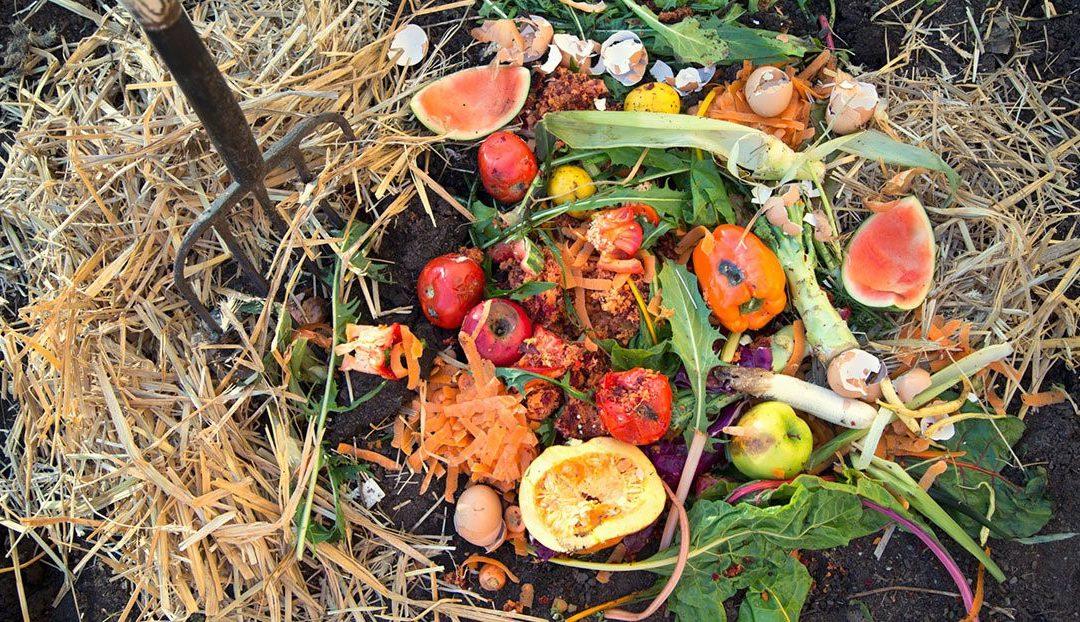 Compostage domestique : réduisez vos déchets et cultivez votre potager !